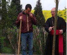 Veliaj: Kisha Katolike na u bashkua në Ditën e Tokës me mbjelljen e një peme simbolike