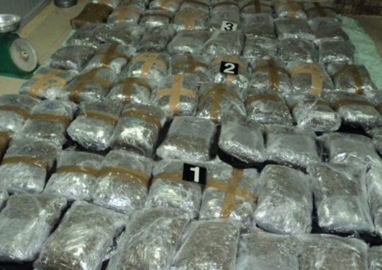 Rama: Këtë vit droga është rrafshuar komplet
