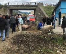 Kryebashkiaku i Kurbinit shkeli premtimet jetike për komunitetin